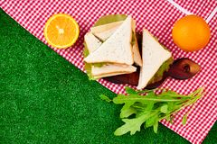 Picnic on the grass. Red checked tablecloth, basket, healthy food sandwich and fruit, orange juice. Top view.  Summer Time Rest. Flat lay Royalty Free Stock Photos