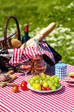 Picnic on the grass Royalty Free Stock Images