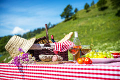 Picnic on the grass Royalty Free Stock Photos