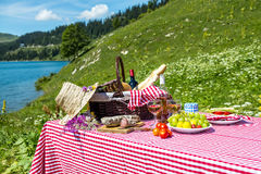 Picnic on the grass Stock Images