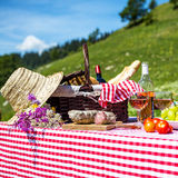 Picnic on the grass Stock Photography