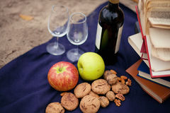 Picnic in the grass with tasty food and wine Stock Image