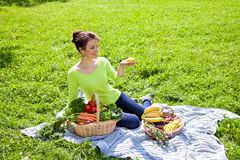 Picnic on grass Royalty Free Stock Photos