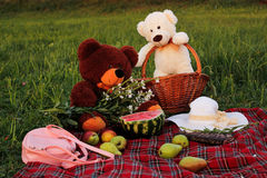 Picnic on a green meadow in the summer royalty free stock image