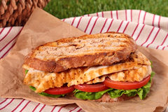 Picnic griddle chicken salad sandwich close up stock photo