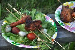 Picnic with grilled broiler and vegetables Stock Photos