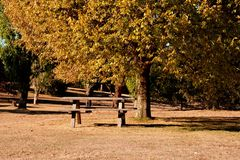 Picnic grounds in Autumn. Royalty Free Stock Photography