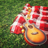 Picnic with Guitar Music on Grass. Summer Vacations. Selective Focus. Space for Your Text Stock Photos