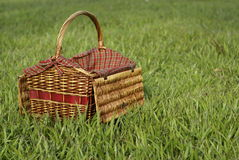 Picnic hamper in green grass Stock Images