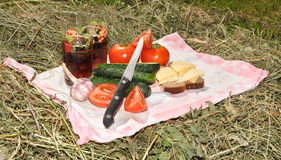 Picnic on hay Royalty Free Stock Image
