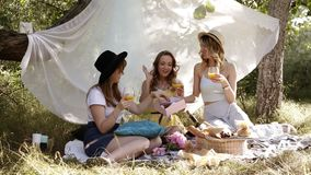 Picnic or hen party concept outdoors. Three attractive young women sitting, laughing. Cheers with cocktails. Sunny day. Green nature stock video footage