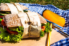 Picnic with homemade sandwiches Royalty Free Stock Photo