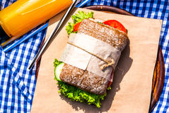 Picnic with homemade sandwiches royalty free stock photos