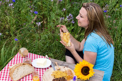 Picnic with honey Stock Photography