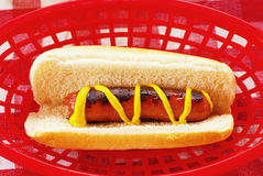 Picnic Hot Dog Stock Image