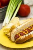 Picnic Hot Dog On Bun With Mustard Royalty Free Stock Image