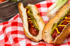 Picnic Hot Dogs Lunch Stock Images