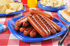 Picnic Hot Dogs. A picnic plate loaded with grilled hot dogs Stock Photography