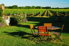 Free Picnic In The Winery Royalty Free Stock Photo - 85456435