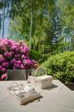 Picnic kit in domicile garden. Photo of picnic kit in beautiful domicile garden Stock Photography