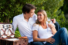 Picnic at the lake with wine in summer Royalty Free Stock Images