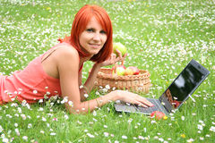 Picnic with laptop Royalty Free Stock Image