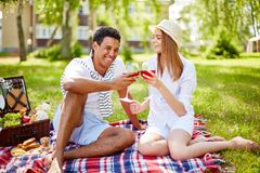 Picnic on lawn Royalty Free Stock Images
