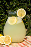 Picnic lemonade Stock Photo