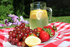 Picnic lemonade Stock Image