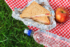 Picnic lunch. Photo of a picnic lunch consisting of a sandwich, an apple and a bottle of mineral water all on a red checkered cloth Stock Images