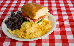 Picnic Lunch. A picnic lunch consisting of a sandwich, potato chips and grapes on a red gingham tablecloth Royalty Free Stock Photography