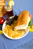 Picnic Lunch. A picnic lunch consisting of a sandwich, potato chips and grapes on a blue gingham tablecloth Stock Photography