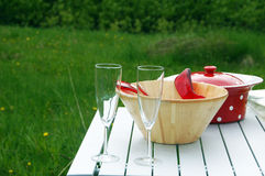 Picnic lunch Royalty Free Stock Photos