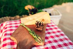 Picnic lunch on red checkered tablecloth. royalty free stock photos