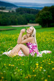 Picnic on the meadow Royalty Free Stock Photo