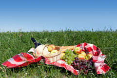 Picnic on meadow Stock Images