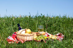 Picnic on meadow Royalty Free Stock Images