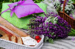 Picnic in the meadow. Basket with flowers lupine Stock Photos