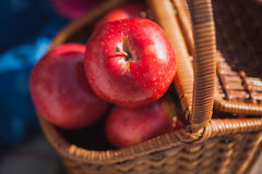 Picnic in the meadow. Basket of red apples Stock Photos