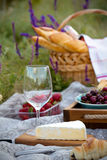 Picnic in the meadow Stock Image