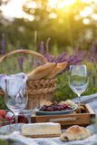 Picnic in the meadow Stock Images