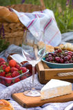 Picnic in the meadow Stock Photos