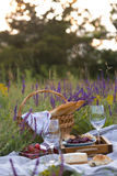 Picnic in the meadow Royalty Free Stock Images