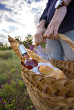 Picnic in the meadow Royalty Free Stock Photo