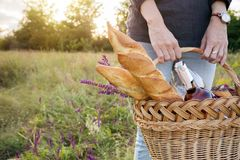 Picnic in the meadow. Summer - Girl with a basket goes on a picnic Stock Photos