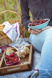 Picnic in the meadow Royalty Free Stock Photos