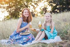 Picnic in the meadow royalty free stock image