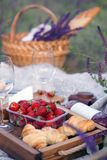 Picnic in the meadow. Summer - picnic in the meadow. Cheese brie, baguette, strawberry, cherry, wine, croissants and basket Stock Image