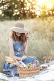 Picnic in the meadow stock photography