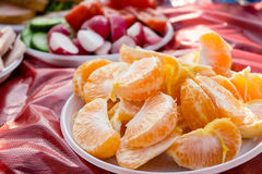 The picnic meal. Oranges, radishes and cucumbers in plates on th. Some of the picnic meal like oranges, sliced radishes and cucumbers in white plastic plates on Royalty Free Stock Images